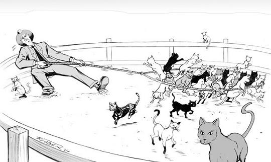 Herding_Cats