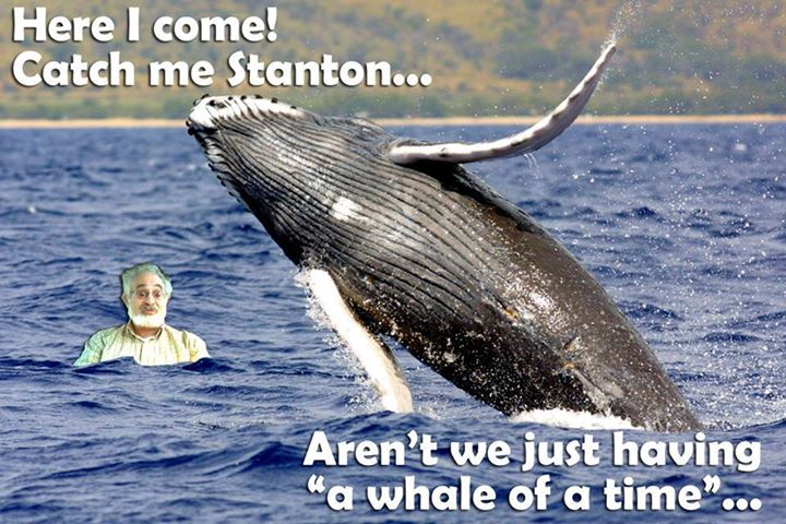 Stanton-and-the-Whale